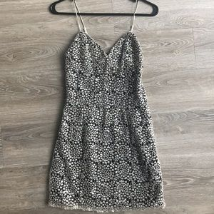 Gianni Bini Mini Lace Gold and Black Sparkly Dress